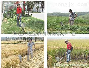 供應河南新型小麥收割機 便捷式小型收割機Z6