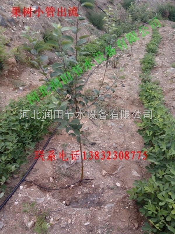 江西九江果树滴灌16PE支管价格