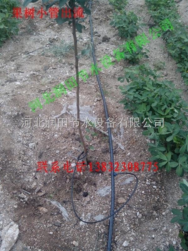 江西抚州市果树滴16Pe支管价格