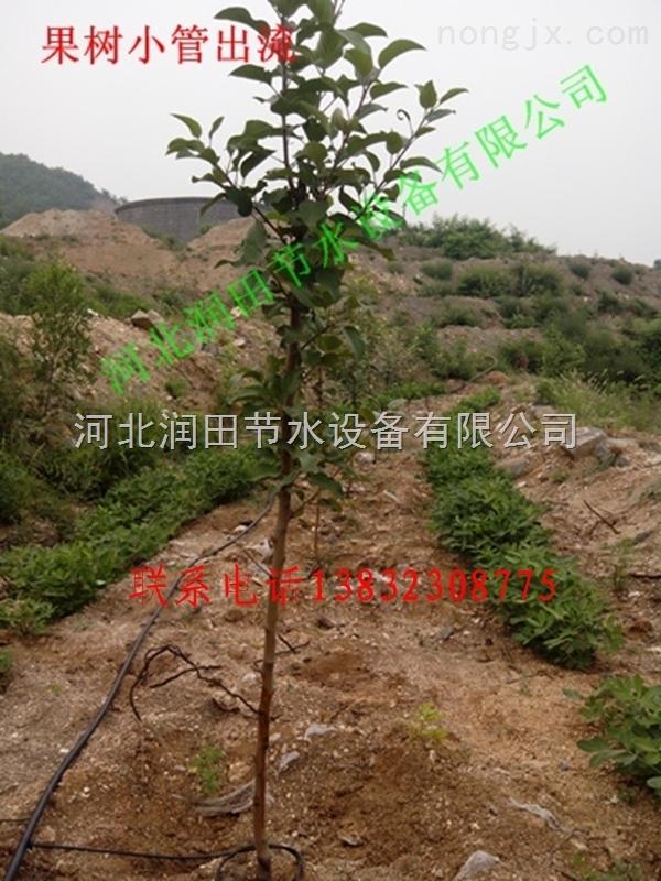 九江市果树滴灌16管价格,滴灌滴头厂家