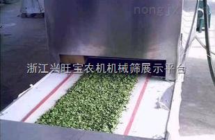 供应志雅微波金银花杀青机
