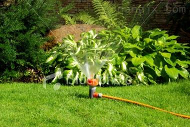 雨鸟1804喷头  草坪喷头