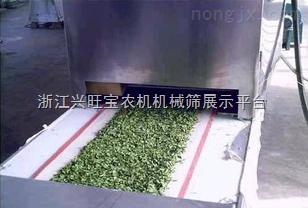 供應志雅ZY-60HM微波金銀花殺青機