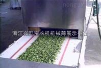 供应志雅ZY-60HM微波金银花杀青机