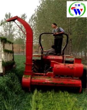 玉米秸秆青储饲料机高阳