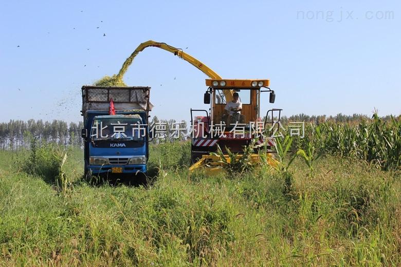 4QZ-830型自走式青贮饲料收获机北京青贮收割机价格