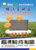 生物质水稻育苗盘
