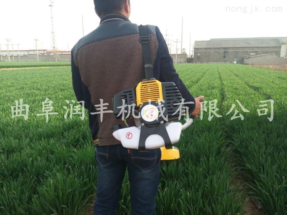 RF GC-A-玉米收割机 背负式玉米收割机 玉米收割机厂家