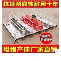 养殖设备厂家供应优质母猪双体产床铸铁腿产床