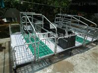 山西新建500头母猪自繁自养猪场母猪产床