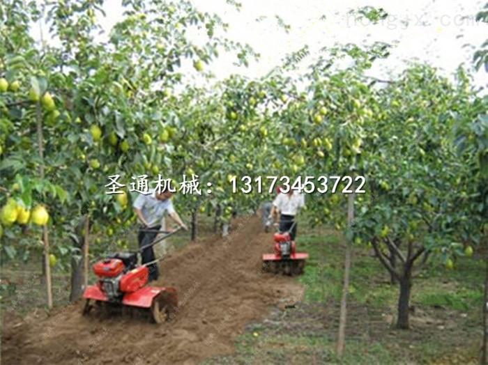 园土疏松扶垄机 农用种植微耕机