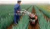 红薯起垄施肥机,自制施肥机,人工播种施肥机,烟草施肥机,甘蔗中耕施肥机,草坪施肥机,手扶拖拉机开沟施